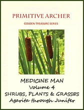 Golden Treasure, Medicine Man, Volume 4, cover