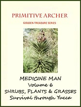 ,Golden Treasure Series Medicine Man Volume 6, cover